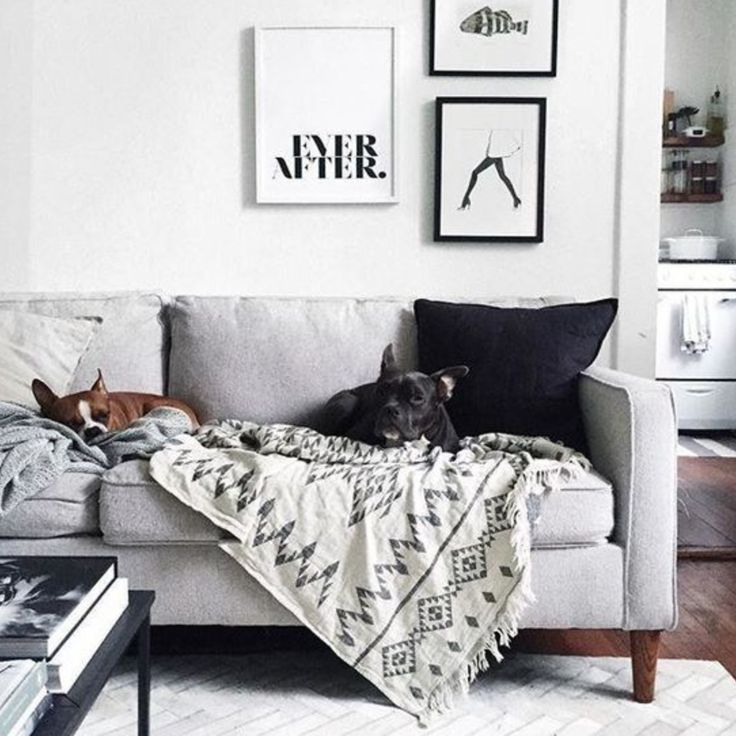 These cute pups look very content on our Oteki Throw!  💕 www.knotty.com.au