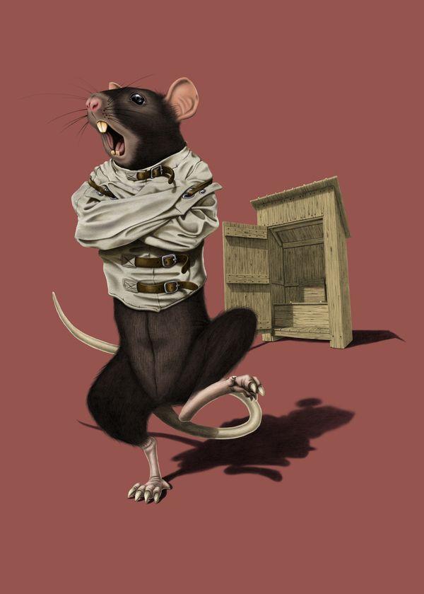 Shithouse (Colour) art | decor | wall art | inspiration | animals | home decor | idea | humor | gifts