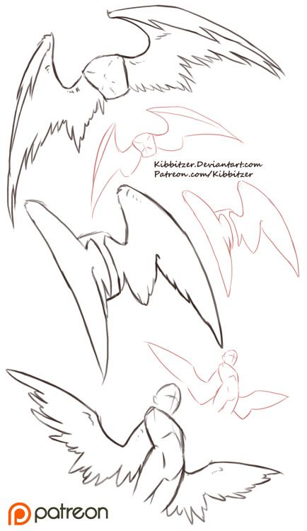 Wings Reference Sheet by *Kibbitzer It's time to fly! Wings are..FUCKING.DIFFICULT. this is just a preview, If you are interested you can find the…