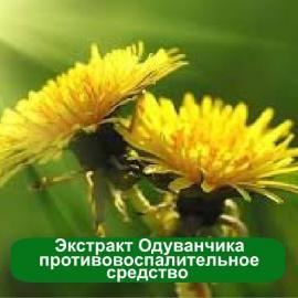 Натуральный жидкий экстракт-концентрат Одуванчика 1 литр в косметике против прыщей и угревой сыпи. Отбеливающие средства от веснушек и пигментации. Витаминные, омолаживающие кремы.
