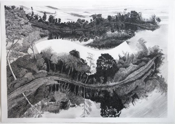 """francisco faria - """"nova dispersão sobre pantanal"""" (new spread on pantanal), 2015 graphite on paper 70 x 100 cm (variações von martius)"""