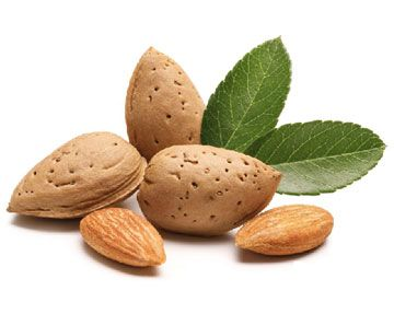 Since ancient times, Almonds have been prized throughout the world for their delicious taste, crunchy texture, and for their nutritional value. Almonds grow on trees that bloom from February through March.