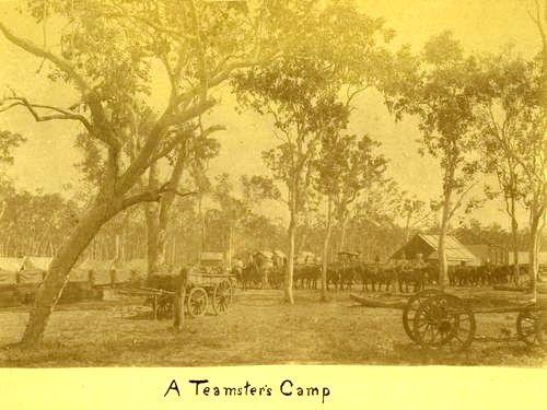 A teamster's camp near Mackay, c. 1882