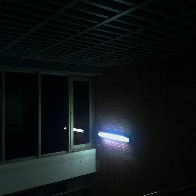 🌑. . . . . #light #neon #neonlights #night #dark #strangerthings #demagorgon