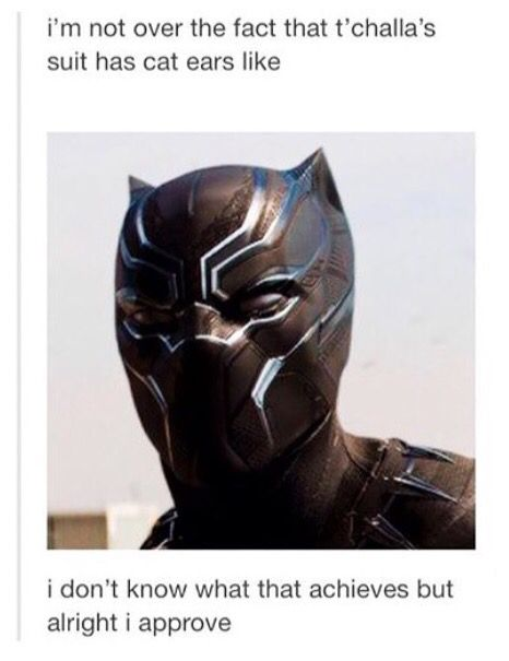 I THOUGHT OF THIS TOO!!! --- PEOPLE HE'S BLACK PANTHER... HELLO... HE KIND OF NEEDS CAT EARS ON THE DAMN SUIT! (Steve forgive me for the language...)