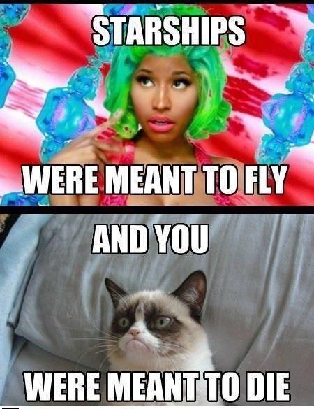 Grumpy Cat vs Niki Minaj