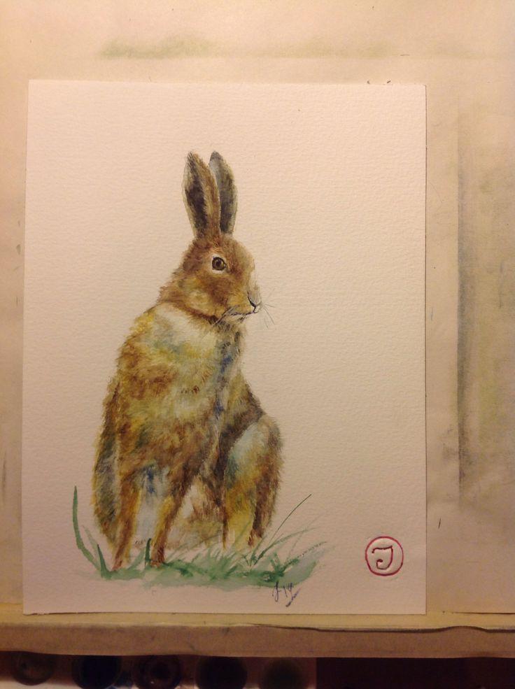Bunny. 2014, watercolor.