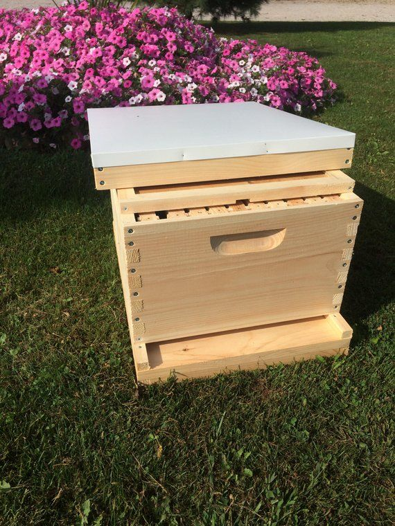 1 Deep 9 5 8 W Frames Beekeeping Bee Hive Assembled Bee Keeping Bee Hive Kits Bee Supplies