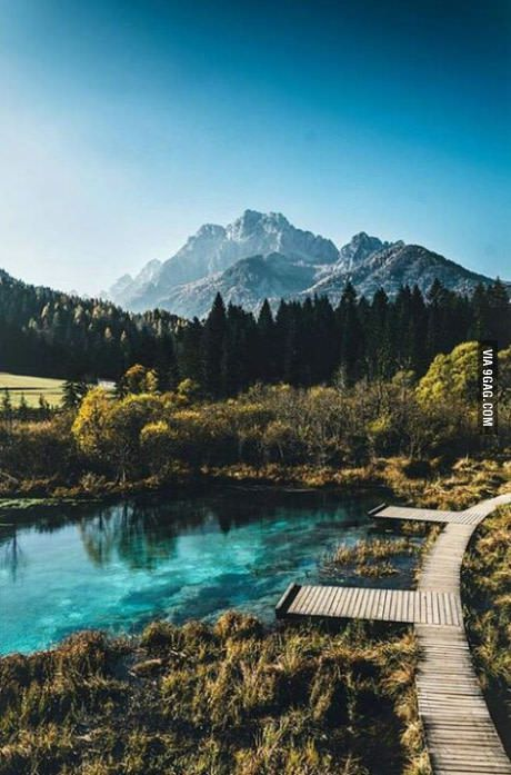 One of many reasons I love my country. Slovenia btw