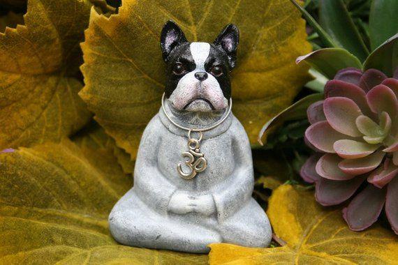 Buddha Dog Ready To Ship Boston Terrier Miniature Yoga Dog Meditation Statue Zen Dog Concret Zen Dog Boston Terrier Terrier