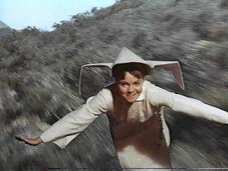 The Flying Nun (1967-70)  - Sally Field