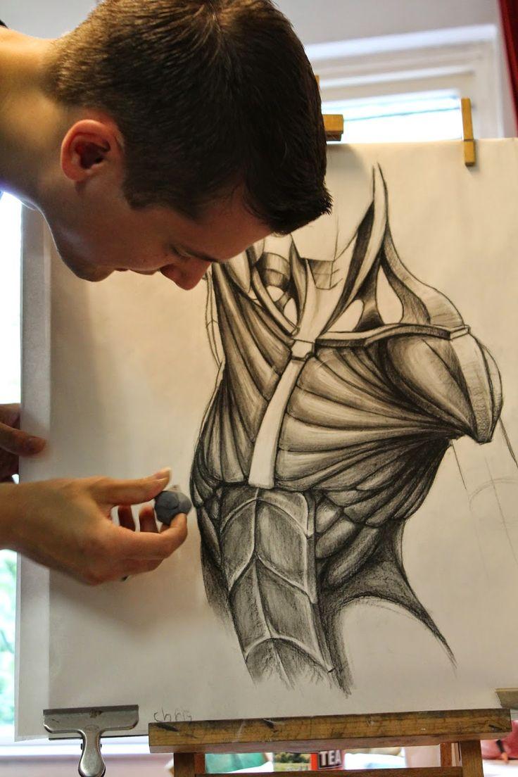 Tips voor je tekening: Anatomie tekenen aan De tekenacademie