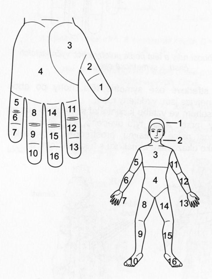 První pomoc při akutních potížích, úleva od chronických bolestí i preventivní opatření – to vše dokáže masáž pružným Su jok prstýnkem, který je k sehnání ve zdravotnických potřebách nebo prodejnách orientální medicíny.