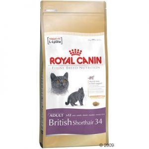 Royal Canin British Shorthair Adult | Great deals at zooplus!