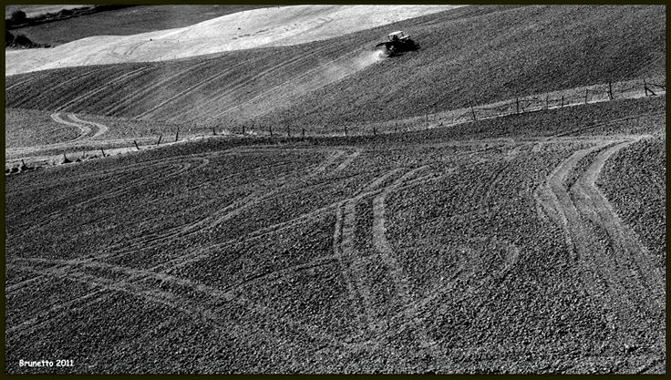 Paesaggio Senese-Toscana