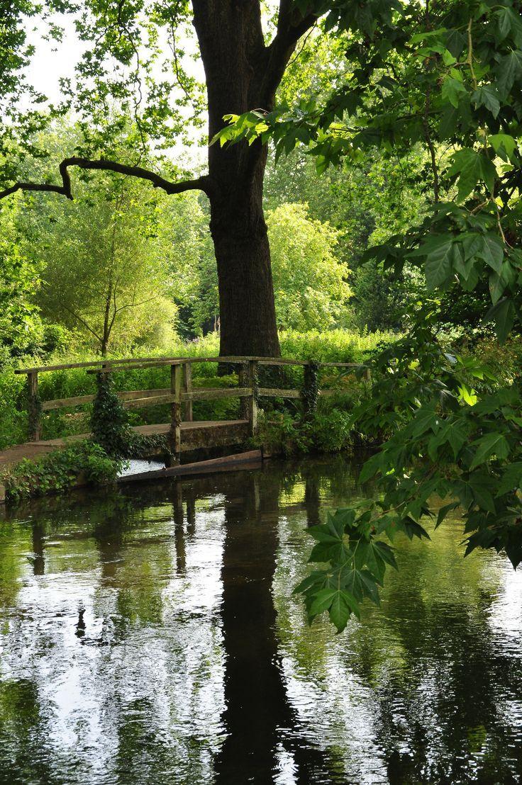 17 best images about garden bridges on pinterest gardens for Garden pond life