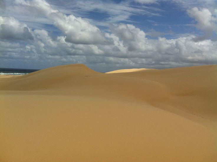 #stockton #sanddunes www.sandduneadventures.com.au