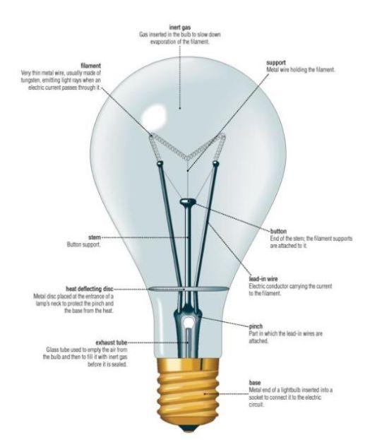 What S In A Light Bulb Home Buyer Corner Pinterest