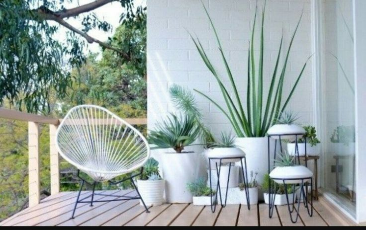 Best 25 artificial plants ideas on pinterest artificial for Silla acapulco ikea