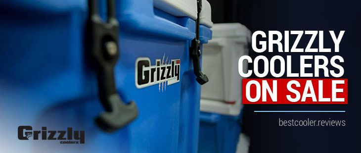If you are on the lookout for a be-everything do-everything cooler, then you have come to the right place. The Grizzly line of coolers can be taken on the go for your next camping trip, hunting adventure or hanging out in the parking lot before the big game. There are many grizzly coolers for sale, but are they right for you?  That's what we'll unpack in this Grizzly cooler review.  Grizzly Coolers For Sale – A Comprehensive #Grizzly #Cooler Review #grizzlycoolers #
