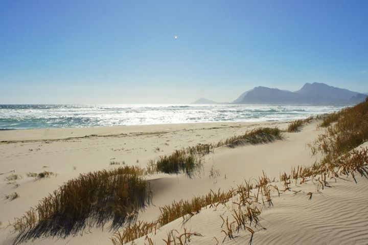 Langs die strand by die duine