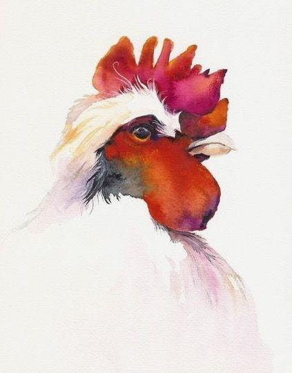 Amber Alexander   WATERCOLOR   Rooster