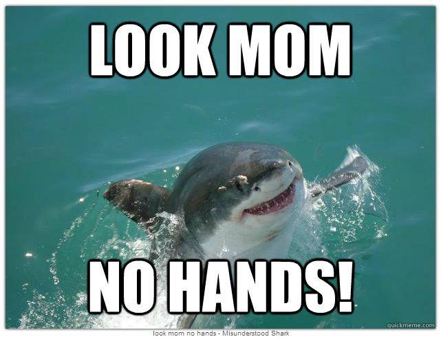 Celebrate Shark Week With Misunderstood Shark - Babble.com