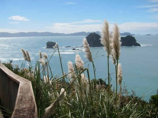 View from the viewing platform at the start of the walk down to Cathedral Cove.