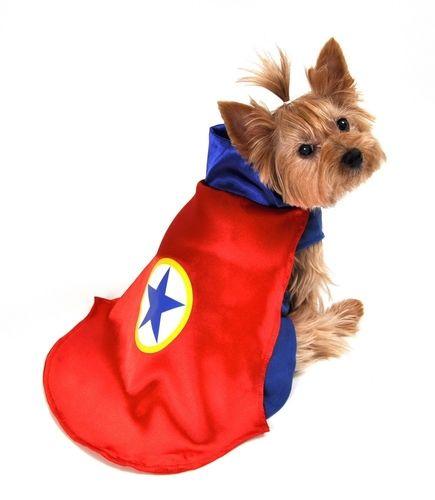 Superhero Dog Costume - Red Cape