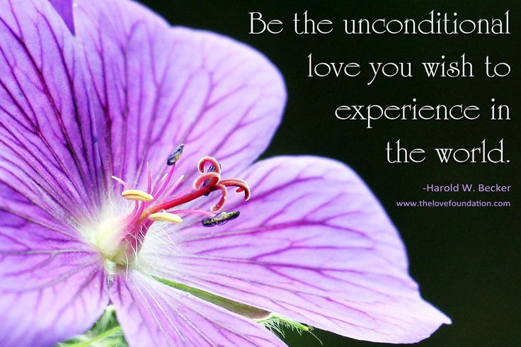 595ff6e437e27faf6cb6f761274f5ac2--unconditional-love-quotes-becker.jpg