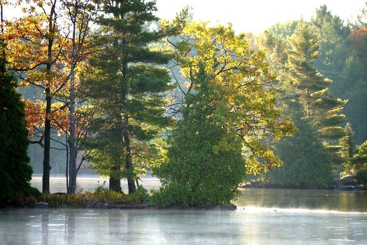 Canadian Shield cottage country with mist on the water. longwkd.com