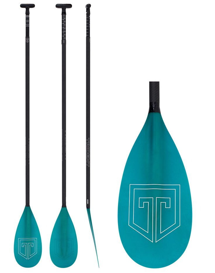 TRIDENT T669FG-LL ADJUSTABLE PADDLE  - with LeverLock