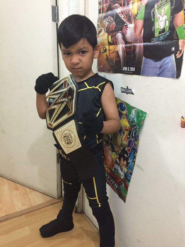 wwe universe on costume ideashalloween - Universe Halloween Costume