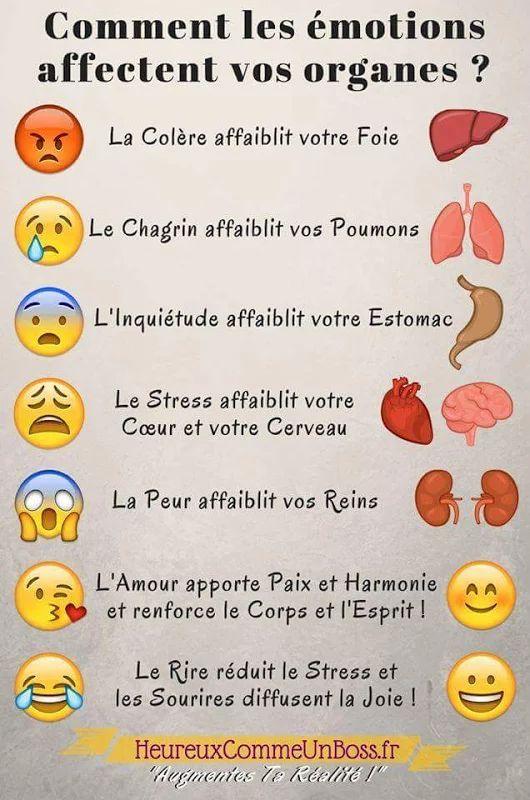 Émotions et organes