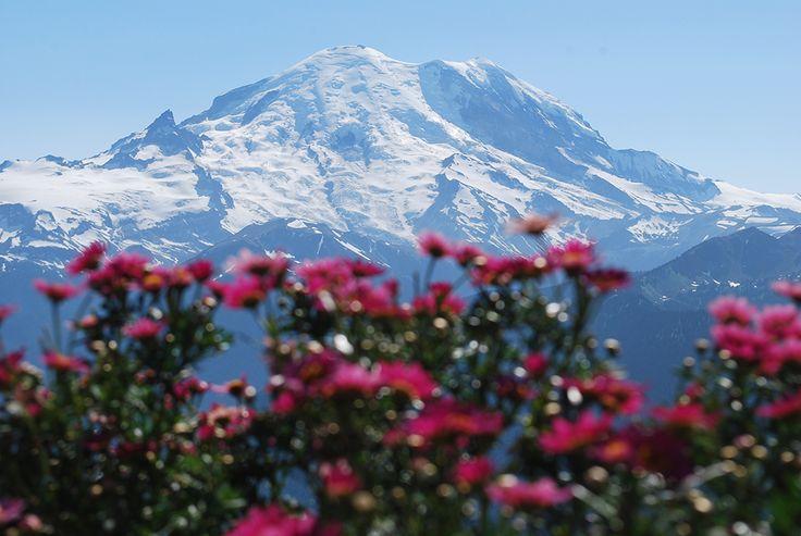 Crystal Mountain Resort | Summer Fun Near Mount Rainier National Park