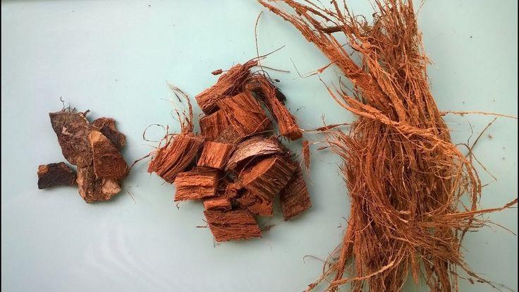Кокос для орхидей. Кокосовые чипсы, кокосовое волокно и скорлупа своими ...