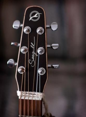 Seagull Guitar Serial Numbers: When Was Your Seagull Guitar Built