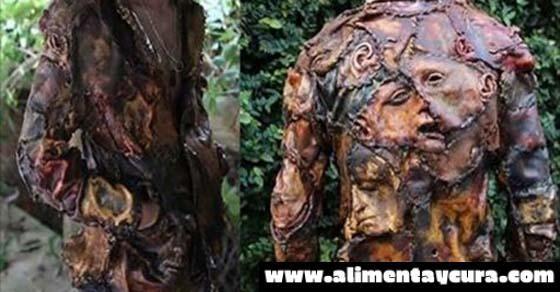 Resultado de imagen para chaqueta de piel humana
