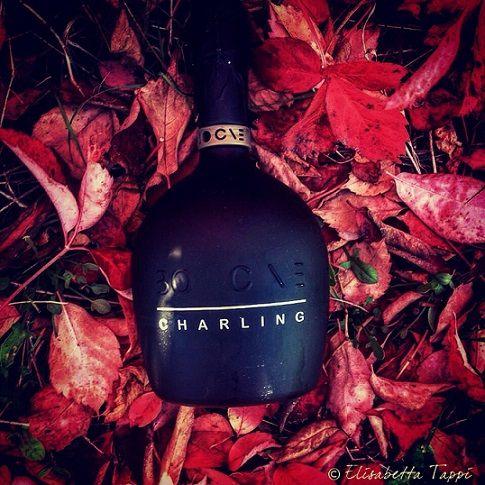 Charling_vino_spumante_millesimato_2014_brut