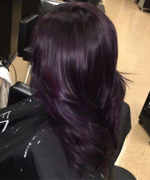 Black Mane With A Dazzling Hint Of Dark Purple Plum Hair