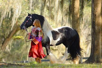 http://www.horse-books-pony-stories.com/images/jpeg.jpg