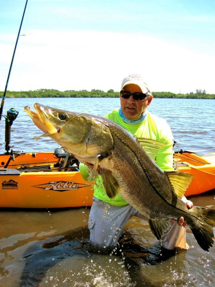 1000 images about fishing on little gasparilla island on for Snook fishing florida