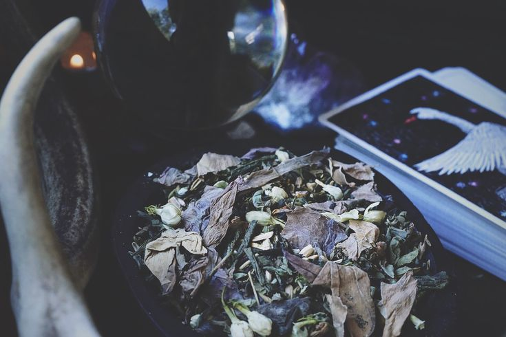 Divination loose leaf tea | herbal tea | Spiritwoods Botanicals