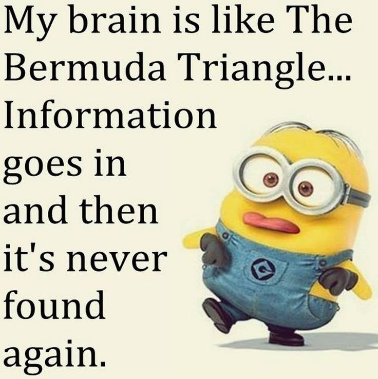 Funny Minions Images Jokes (01:49:17 AM, Thursday 08
