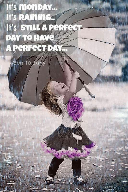 Best 25 happy monday ideas on pinterest happy monday quotes quenalbertini little princess under the rain ccuart Gallery