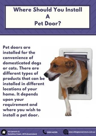 Where Should You Install A Pet Door?  What if the entrance of your room is located on the roof or is too small to enter? Thin this way when installing a pet door for your furry friend.