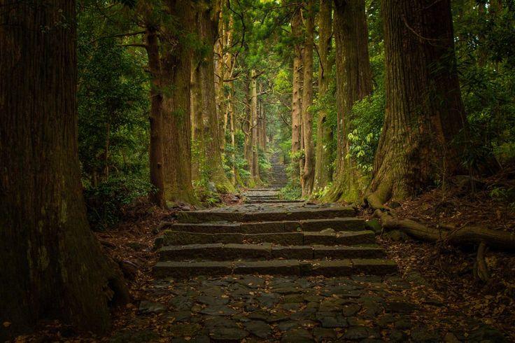 Japan's Kumano Kodo Pilgrimage Route