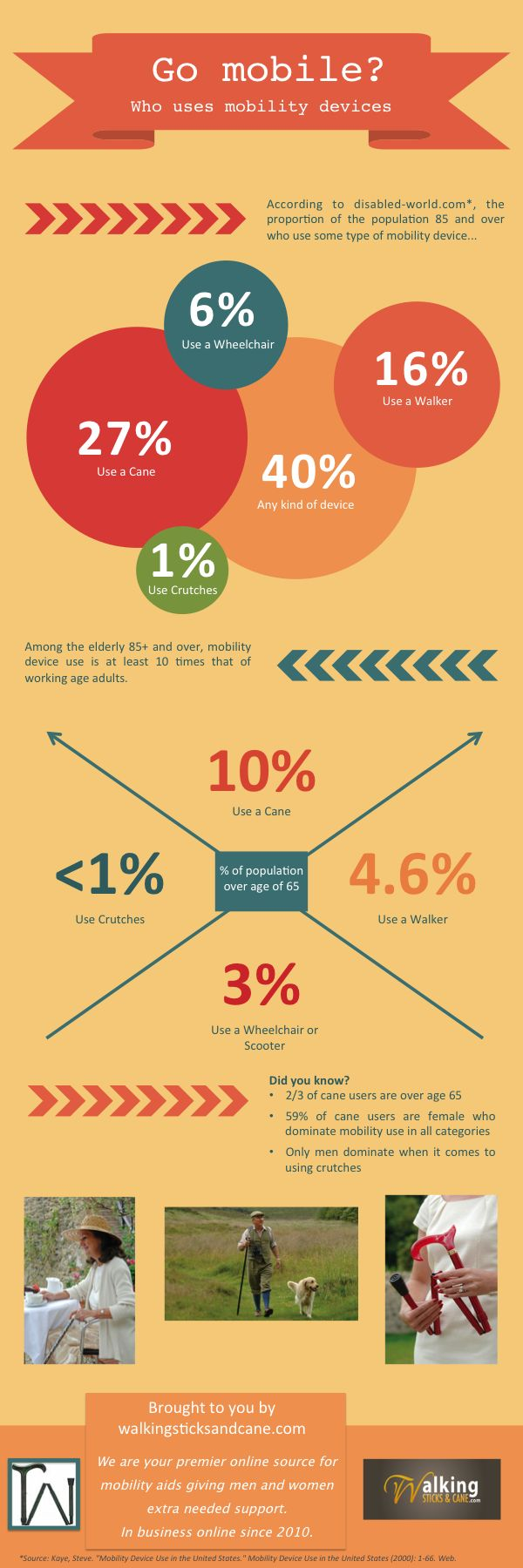 Walking canes for sale elderly mobility usage infographic