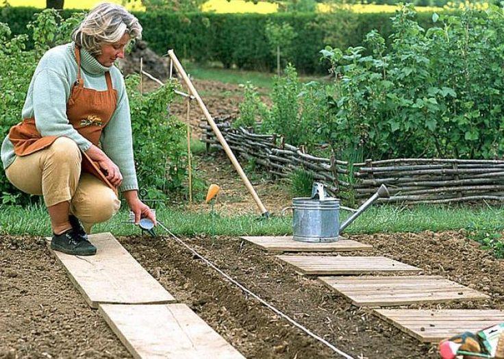 17 meilleures id es propos de tour de pots de fleur sur for Calendrier plantation jardin potager