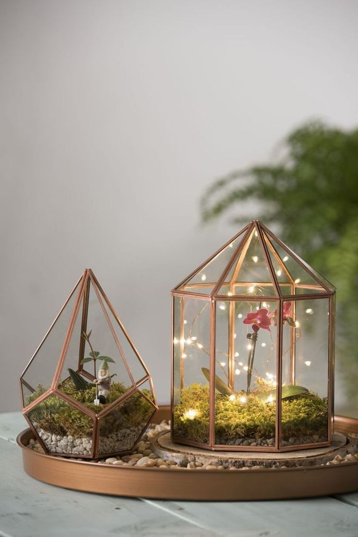 Either with succulents in or just fairy lights! Cute little lamp idea!